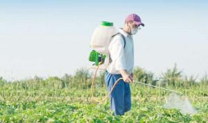 Боротьба з садовими шкідниками
