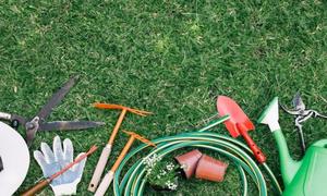 Садові інструменти