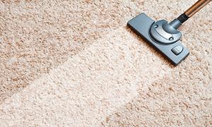 Засоби для чищення килимів