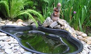 Садові ставки